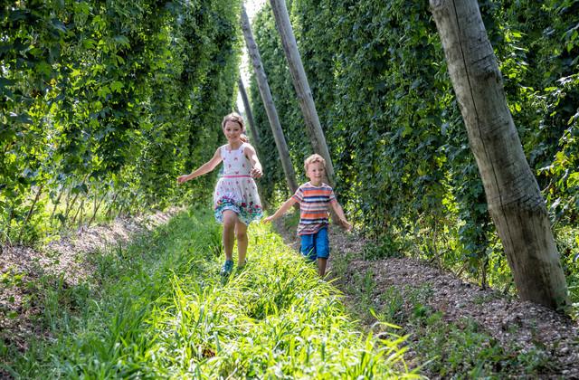 Kinder im Hopfengarten