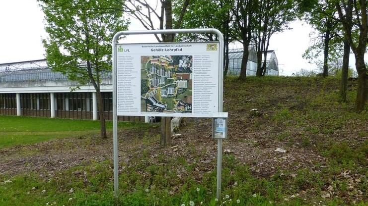 Schautafel Gehölzlehrpfad Freising